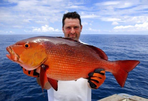 Deep Sea Fishing Mauritius